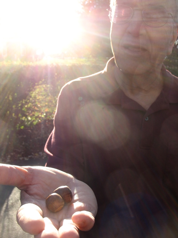 Baba holds out two acorns.