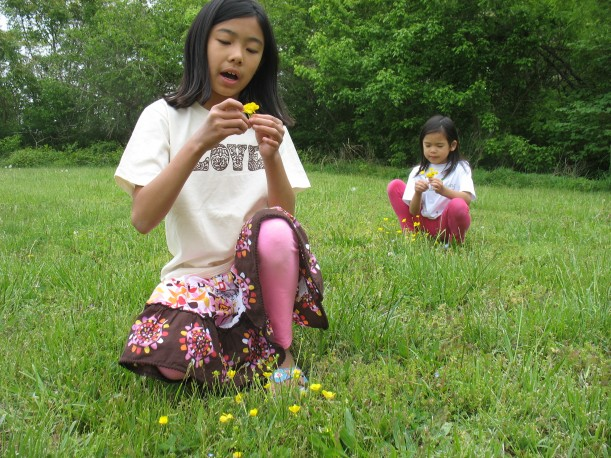 Girls in meadow